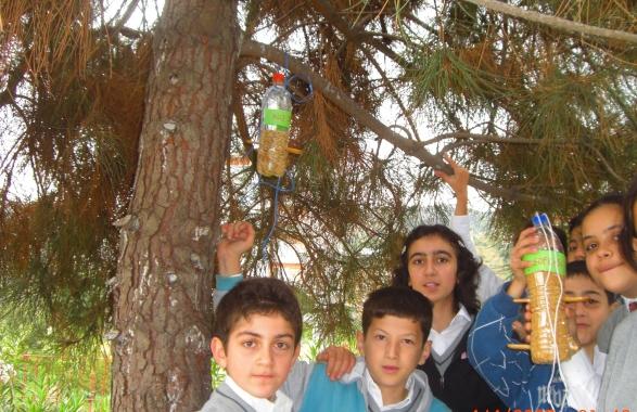 Gençler derneği - türkiye bilinçli gençlik projesi - &;ağaç